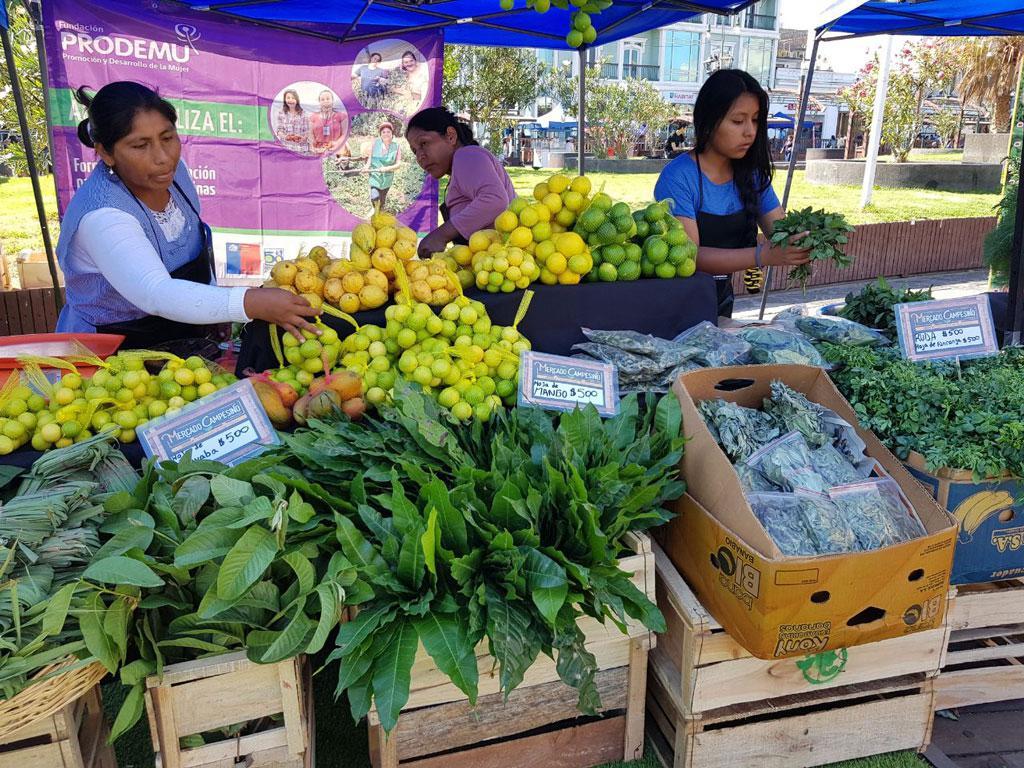 Mercado Campesinio Foto: Gentileza de INDAP