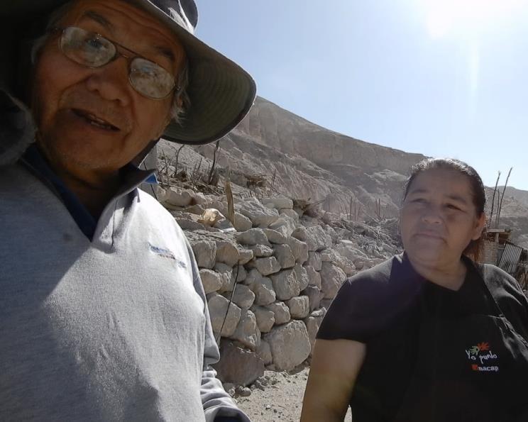 Cultores Huasquiña