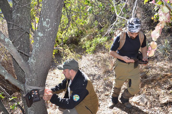 Personal de CONAF en terreno Foto: Gentileza de CONAF