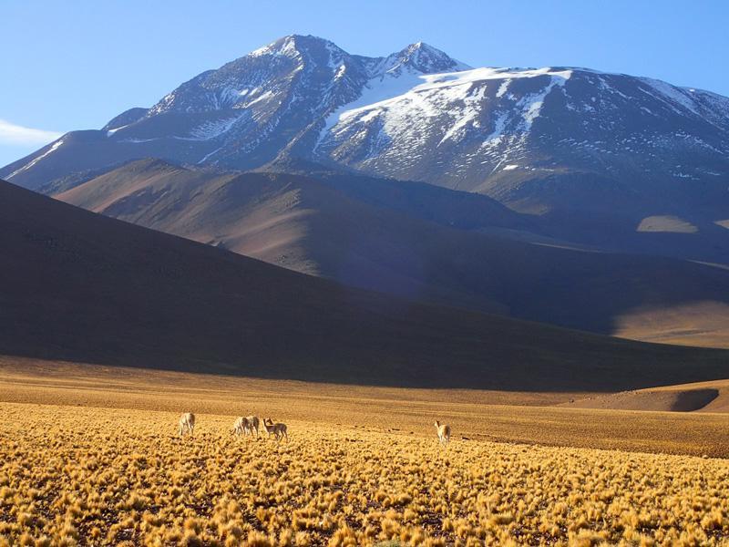 Volcán Llullaillaco, Antofagasta