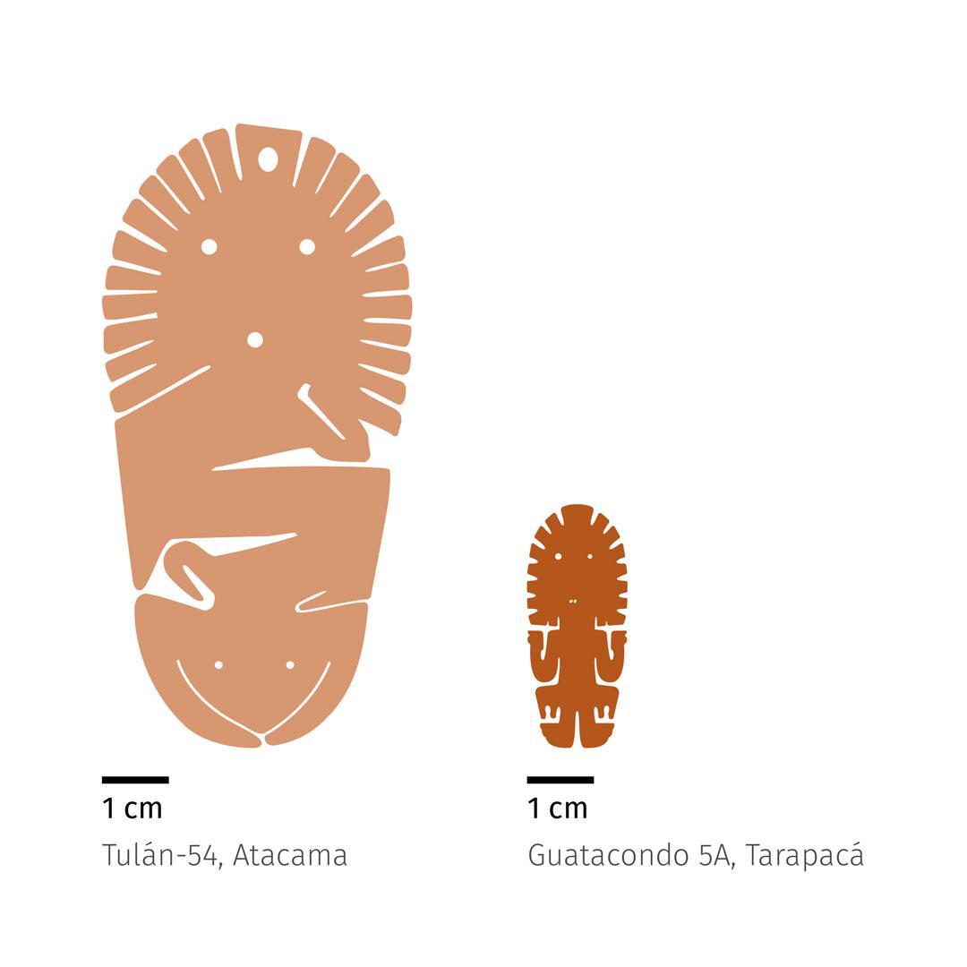 La-figura-guatacondo-6
