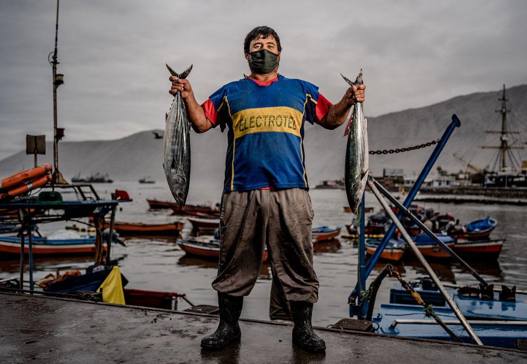 Caleta-ley-de-pesca--Foto-Franco-Miranda-2