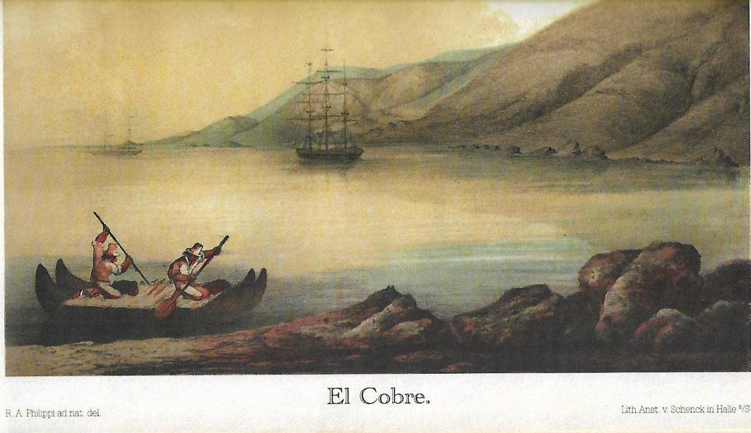 Philippi-caleta-El-Cobre-imagen-balsa-curos-de-lobo-marinos